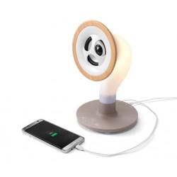 Bluetooth Lautsprecher Grammofon