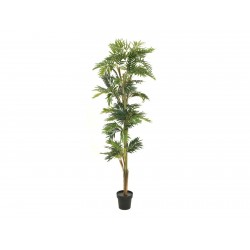EUROPALMS Parlour Palme, Kunstpflanze, 210cm