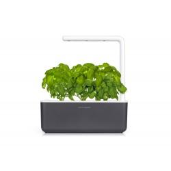 Click & Grow Smart Garden 3 Blumenkasten für Innen grau anthrazit