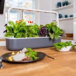 Click & Grow Smart Garden 9 Blumenkasten für Innen