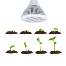 36W E27 LED Pflanzenlampe