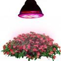 LED Pflanzenlampen